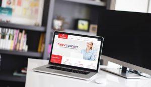 Agentie Web Design Brasov